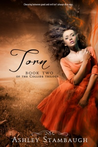 Torn_Cover_Art